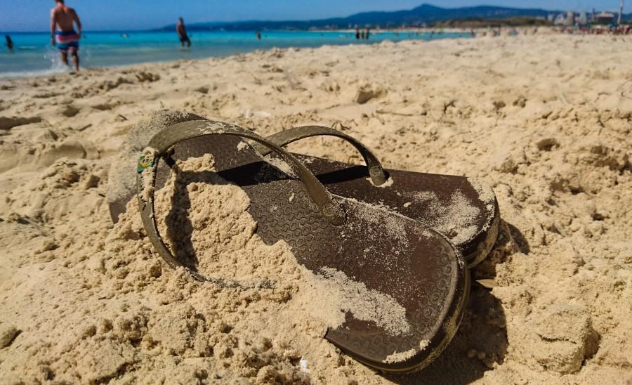social vacanza